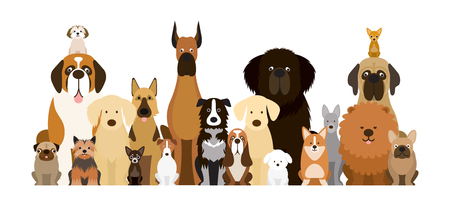 Group of Dog Breeds Illustration, Various Size, Front View, Pet Vettoriali