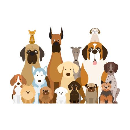 Ilustración de grupo de razas de perros, varios tamaños, vista frontal, mascota