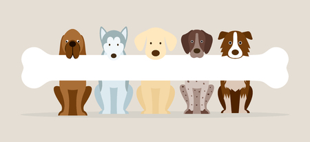 Group of Dog Breeds Holding Bone, Front View, Pet, Background, Banner Illustration