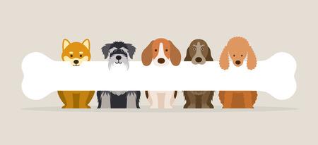 Grupo de razas de perros con hueso, vista frontal, mascota, fondo, banner