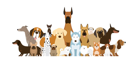 Group of Dog Breeds Illustration, Various Size, Front and Side View, Pet