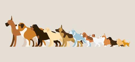 Group of Dog Breeds Illustration, Side View Arranged in Height Order Banque d'images - 97691864