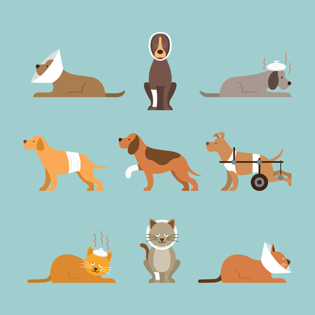 Cats and Dogs Get Sick Vector Set