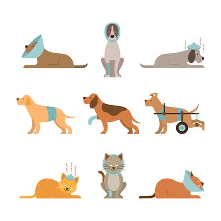 Katten en honden worden ziek Vector Set