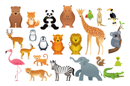 Wild Animals Vector Set, Zoo, Safari, Front view and Side View Illustration