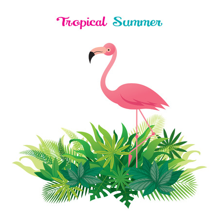 Pink Flamingo with Tropical Jungle, Animal with Plant and Nature, Background