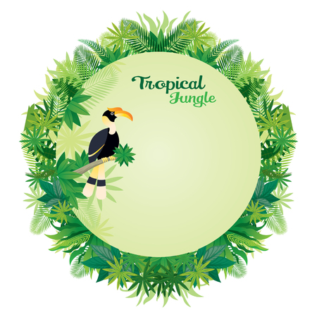 Hornbill Bird with Tropical Jungle Round Frame, Animal with Plant and Nature, Background