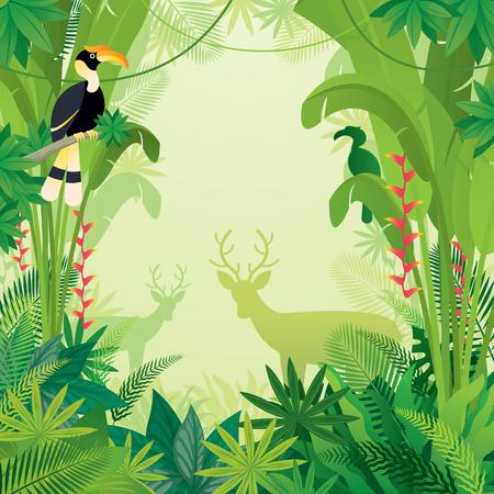 Dzioborożec i jeleń w tle tropikalnej dżungli, lesie, lesie deszczowym, roślinach i przyrodzie