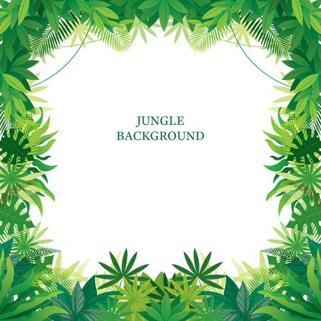 Tropischer Dschungelrahmen, Wald, Pflanze und Natur, Hintergrund Vektorgrafik