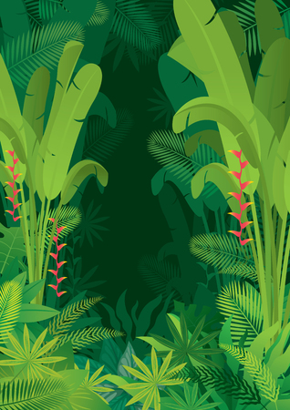 Tropical Jungle Dark Background, Forrest, Rainforest, Plant and Nature Stock Vector - 105293333