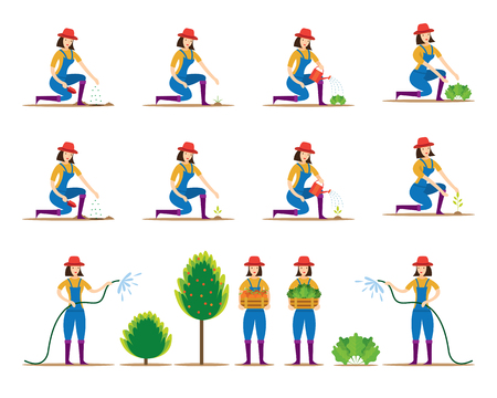 Women Character Planting Vegetable and Tree, Gardening, Plantation, Farming, Agriculture Product Illustration