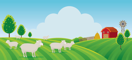 Sheep Farm on Hill Landscape Background, Agriculture, Cultivate, Countryside, Field, Rural Illustration