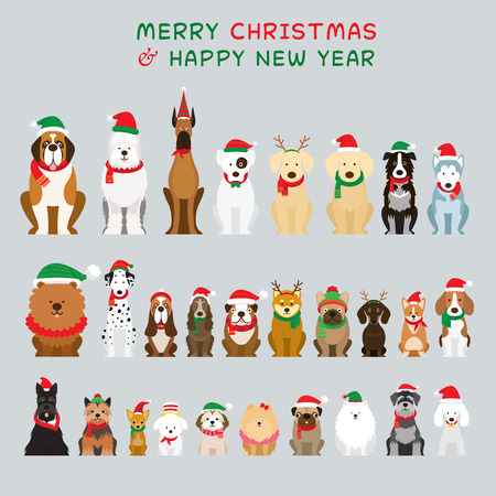 Dogs Sitting and Wearing Christmas Costume, Characters, Winter and New Year Celebration
