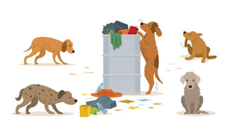 Group of Stray Dogs Rummage a Trash Can, Homeless, Sad, Sick and Hungry