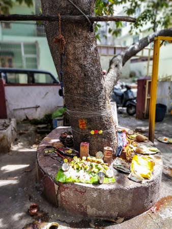 Thread tied to a tree trunk, ritual offering to the tree god kept under the tree in Mysore India. Hindu rituals offering prayer and edibles to the god by worshipping trees. Stock Photo