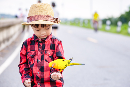 A bird on children hand in the park. Stock Photo