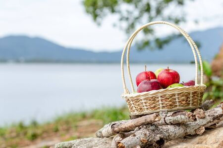 An Apple in basket and on the ground. 写真素材