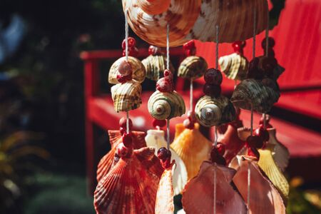 Mobile made from shells, Seashell decoration and sun light.