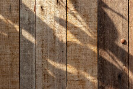 wood texture. abstract natural background with surface wooden pattern grunge.