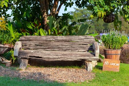 Wooden bench under the tree at park.