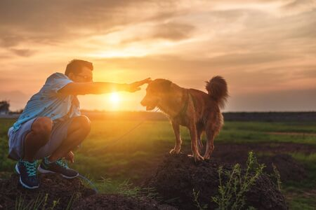 A man and a dog playing together on the stone at sunset.
