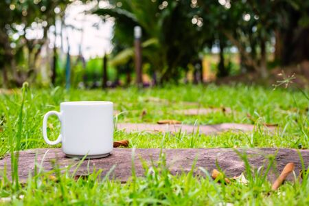 A cup of coffee on the ground in the morning at garden. Фото со стока