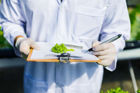 Scientists test the solution, Chemical inspection, Check freshness at organic, hydroponic farm.