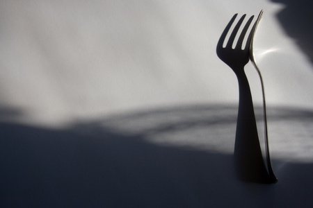 Silver fork on light background with shadows