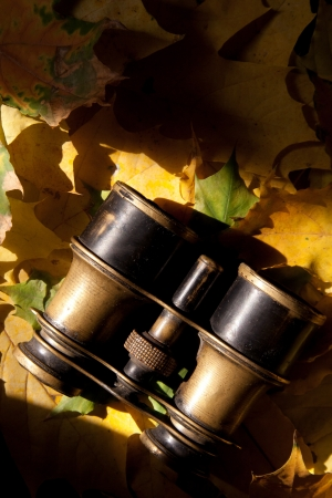 antique binoculars: Old binoculars and autumn leaves.