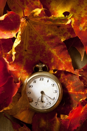 Antique pocket watch covered with autumn leaves  Stock Photo