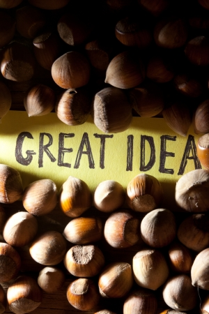 oncept: Сoncept great idea. Iinscription great idea idea and nuts.
