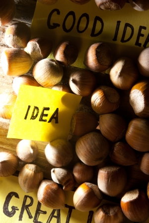 oncept: Сoncept idea. Word idea and nuts.