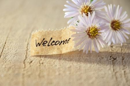 歓迎バナーと花 写真素材