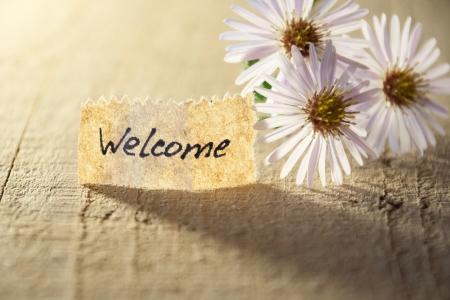 bienvenida: bandera con la bienvenida y flores Foto de archivo