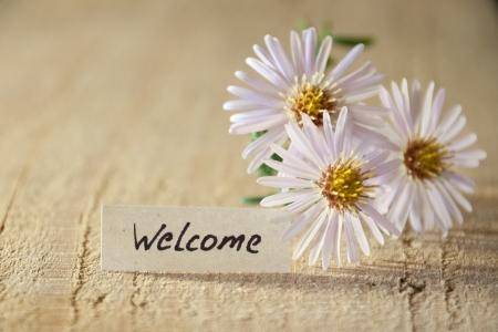 bienvenidos: bandera con la bienvenida y flores Foto de archivo