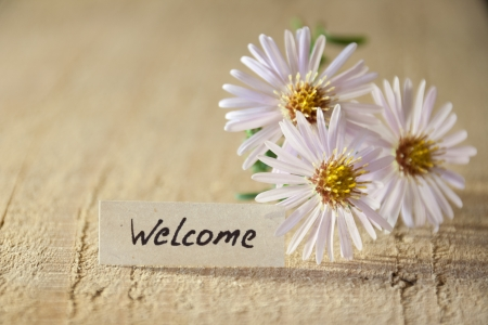 greet: banner with welcome and  blossoms