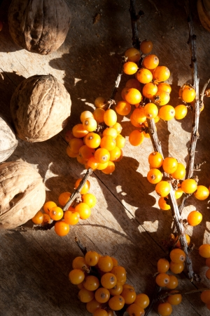 seabuckthorn: Sea-buckthorn berries on a wooden surface and walnut.