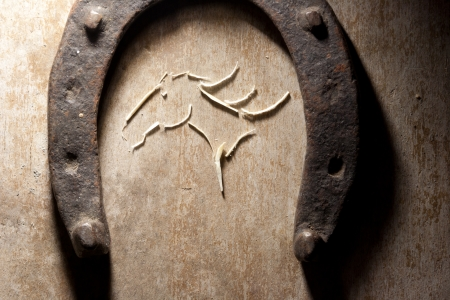 horses head on the wooden background and the old horseshoe photo