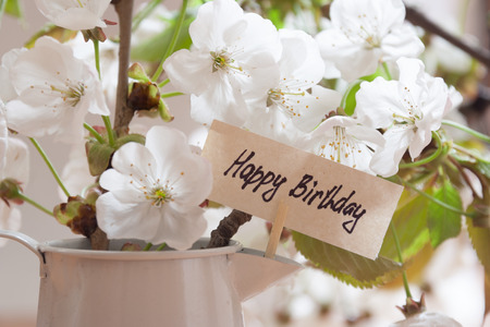 happy birthday greeting card white flowers on a background stock photo picture and royalty free image image 27847014 - Happy Birthday Cards Flowers