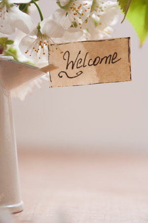 welcome hand lettering and white cherry blossoms photo