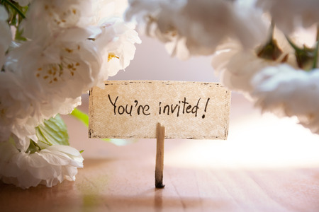 You're Invited hand lettering, white flowers on background, wedding invitation.