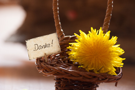 thankfulness: natural looking banner with the german word Danke, which means thanks and yellow blossoms