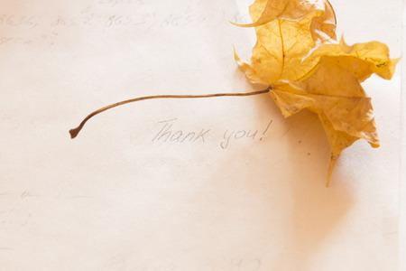 caes: Tarjeta de agradecimiento. Espacio disponible para texto o gráfico.