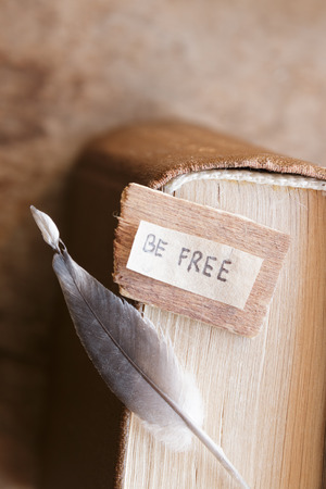 Be free  label, in an  book. Education and knowledge is freedom. Stock Photo