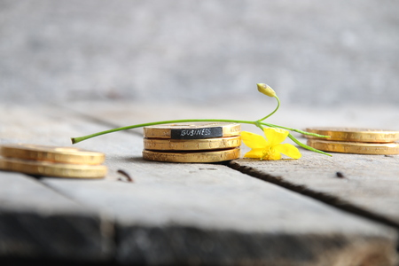 business idea, the gold coins on the table and the tag with the text business