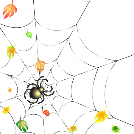springe: Background with Leafs and Spider on a Web in Autumn