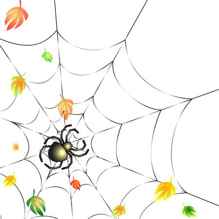 Fond avec Leafs et Spider sur un Web en automne