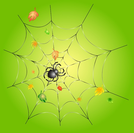 Green background with leafs and a spider on a web