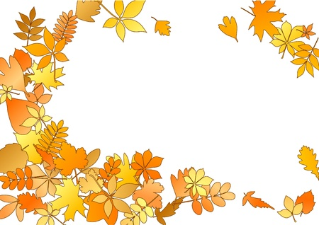 Autumnal frame with different colourful leaves photo