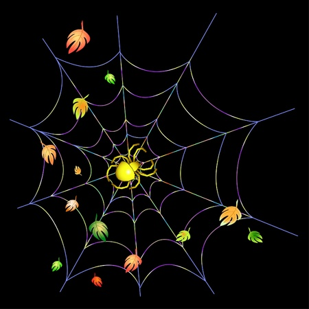 springe: Yellow spider on a web on a black background